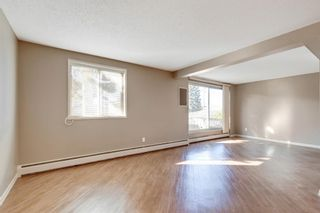 Photo 18: 2815 11 Avenue SE in Calgary: Albert Park/Radisson Heights Detached for sale : MLS®# A1149863