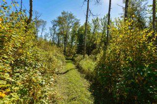 Photo 6: 542069 Range Road 195: Rural Lamont County House for sale : MLS®# E4262796