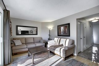 Photo 10: 211 Doverglen Crescent SE in Calgary: Dover Detached for sale : MLS®# A1060305