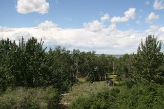 Photo 19: 35 MacDonald Drive in Rural Stettler No. 6, County of: Rural Stettler County Detached for sale : MLS®# A1122917