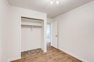 Photo 20: 183 Shawmeadows Road SW in Calgary: Shawnessy Detached for sale : MLS®# A1127759