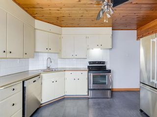 Photo 7: 95 Ferncliff Crescent SE in Calgary: Fairview Detached for sale : MLS®# A1064499