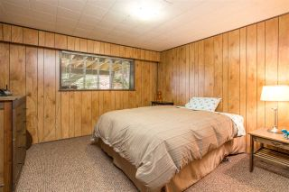 Photo 13: 851 PLYMOUTH Drive in North Vancouver: Windsor Park NV House for sale : MLS®# R2448395