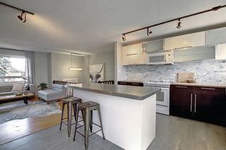 Photo 11: 9804 Alcott Road SE in Calgary: Acadia Detached for sale : MLS®# A1153501