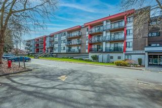 """Photo 21: 306 11240 DANIELS Road in Richmond: East Cambie Condo for sale in """"DANIELS MANOR"""" : MLS®# R2562282"""