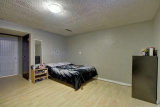 Photo 30: 235 PENBROOKE Close SE in Calgary: Penbrooke Meadows Detached for sale : MLS®# A1029576