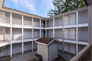 Photo 18: 203 262 Birch St in : CR Campbell River Central Condo for sale (Campbell River)  : MLS®# 870049
