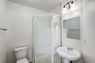 Photo 11: 18 Erin Meadow Close SE in Calgary: Erin Woods Detached for sale : MLS®# A1143099
