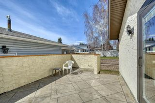 Photo 4: 3512 Brenner Drive NW in Calgary: Brentwood Detached for sale : MLS®# A1100556
