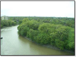 Photo 9: 229 Wellington Crescent in WINNIPEG: Fort Rouge / Crescentwood / Riverview Condominium for sale (South Winnipeg)  : MLS®# 1105973