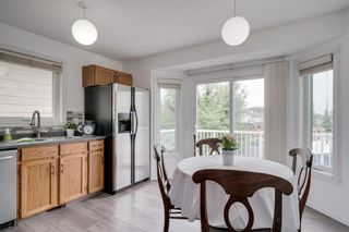 Photo 11: 144 SHAWINIGAN Drive SW in Calgary: Shawnessy Detached for sale : MLS®# A1131377