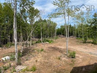 Photo 13: 3821 White Hill Road in White Hill: 108-Rural Pictou County Residential for sale (Northern Region)  : MLS®# 202120961