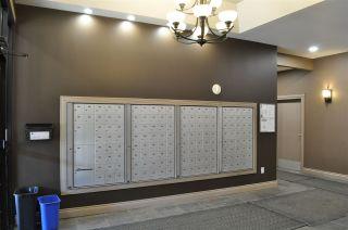 Photo 6: 1006 10303 105 Street in Edmonton: Zone 12 Condo for sale : MLS®# E4230339