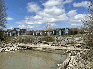 """Photo 37: 708 3281 E KENT NORTH Avenue in Vancouver: South Marine Condo for sale in """"RHYTHM"""" (Vancouver East)  : MLS®# R2560384"""