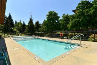 """Photo 20: 219 15918 26 Avenue in Surrey: Grandview Surrey Condo for sale in """"The Morgan"""" (South Surrey White Rock)  : MLS®# R2542876"""