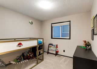 Photo 28: 69 ELGIN MEADOWS Link SE in Calgary: McKenzie Towne Detached for sale : MLS®# A1098607