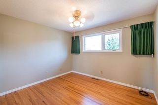 Photo 17: 1836 Matheson Drive NE in Calgary: Mayland Heights Detached for sale : MLS®# A1143576
