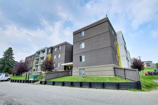 Photo 28: 303 4455A Greenview Drive NE in Calgary: Greenview Apartment for sale : MLS®# A1108022