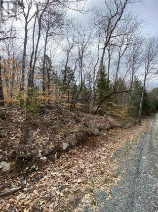 Photo 8: Lot Sunhaven Drive in Labelle: Vacant Land for sale : MLS®# 202108694