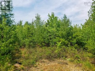 Photo 6: Lot 101 Dorey Mills Road in Clearland: Vacant Land for sale : MLS®# 202119645