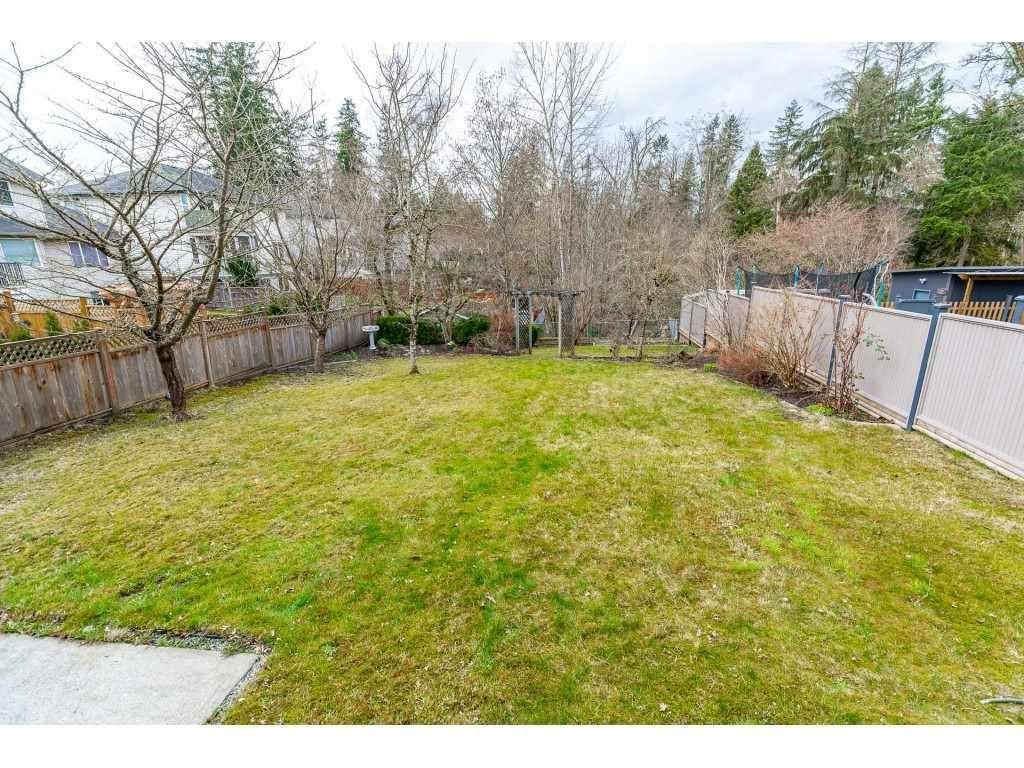 "Photo 38: Photos: 11617 CREEKSIDE Street in Maple Ridge: Cottonwood MR House for sale in ""Cottonwood"" : MLS®# R2554913"