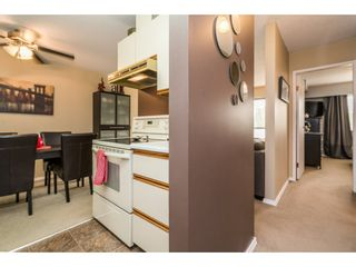 Photo 13: 203 2425 SHAUGHNESSY Street in Port Coquitlam: Central Pt Coquitlam Condo for sale : MLS®# R2195170