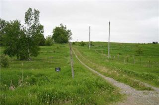 Photo 8: Lot 19 Con 2 in Amaranth: Rural Amaranth Property for sale : MLS®# X4152768