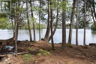 Photo 12: 3497 BRUNEL Road in Lake Of Bays: Vacant Land for sale : MLS®# 40161975