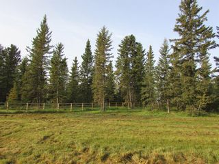 Photo 11: 39-33048 Range Road 51: Rural Mountain View County Land for sale : MLS®# A1085992