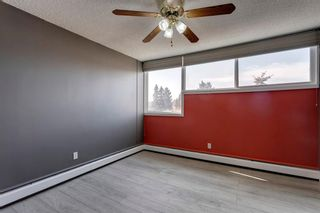 Photo 24: 211 7007 4A Street SW in Calgary: Kingsland Apartment for sale : MLS®# A1086391