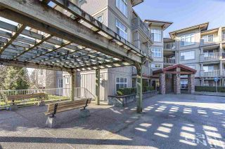 """Photo 1: 114 2515 PARK Drive in Abbotsford: Central Abbotsford Condo for sale in """"VIVA ON PARK"""" : MLS®# R2446836"""