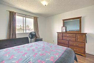 Photo 20:  in Edmonton: Zone 35 House for sale : MLS®# E4254409