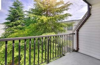 """Photo 18: 304 15238 100 Avenue in Surrey: Guildford Condo for sale in """"CEDAR GROVE"""" (North Surrey)  : MLS®# R2576105"""