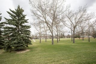 Photo 38: 260 Lynnview Way SE in Calgary: Ogden Detached for sale : MLS®# A1102665