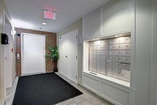 Photo 29: 1302 279 Copperpond Common SE in Calgary: Copperfield Apartment for sale : MLS®# A1146918