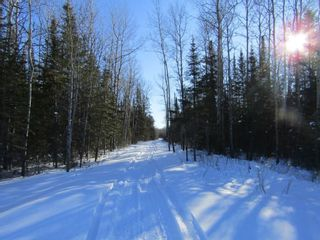 Photo 3: Heward Rd. in Fort Frances: Vacant Land for sale : MLS®# TB200316