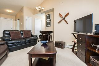 Photo 14: 509 7511 171 Street in Edmonton: Zone 20 Condo for sale : MLS®# E4229398