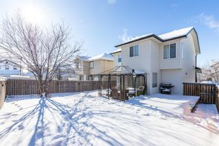 Photo 44: 85 Evansmeade Circle NW in Calgary: Evanston Detached for sale : MLS®# A1067552