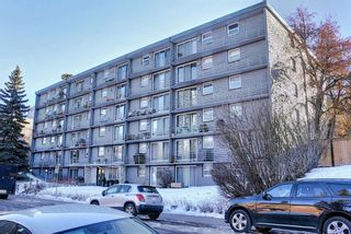 Photo 1: 402 1027 Cameron Avenue SW in Calgary: Lower Mount Royal Apartment for sale : MLS®# A1064323