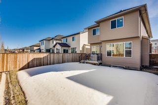 Photo 27: 517 Cranford Drive SE in Calgary: Cranston Detached for sale : MLS®# A1078027