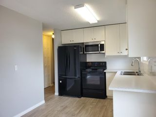 Photo 6: 7619 16 Street SE in Calgary: Ogden Detached for sale : MLS®# A1149186