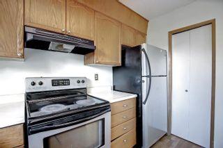 Photo 11:  in Edmonton: Zone 29 House for sale : MLS®# E4262869