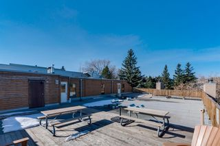 Photo 26: 403 2114 17 Street SW in Calgary: Bankview Apartment for sale : MLS®# A1080981