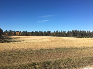 Photo 2: Nipawin Acreage Lot in Nipawin: Lot/Land for sale (Nipawin Rm No. 487)  : MLS®# SK839737