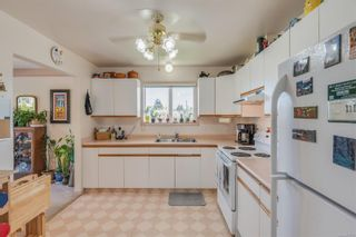 Photo 16: 629 Judah St in : SW Glanford House for sale (Saanich West)  : MLS®# 874110