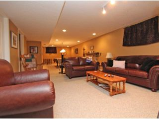 Photo 16: 107 CANOE Crescent SW: Airdrie Residential Detached Single Family for sale : MLS®# C3572341
