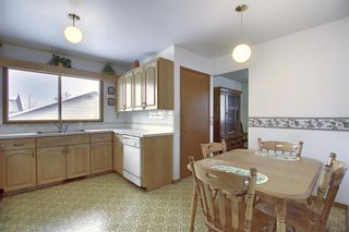 Photo 7: 4323 49 Street NE in Calgary: Whitehorn Detached for sale : MLS®# A1043612