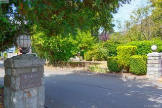 Photo 16: 20 3008 Quadra St in VICTORIA: Vi Mayfair Row/Townhouse for sale (Victoria)  : MLS®# 822598