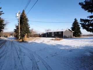Photo 39: 358 Ennis Crescent in Treherne: House for sale : MLS®# 202028582