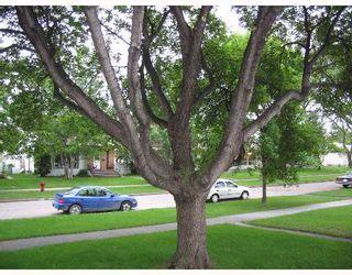 Photo 8: 687 WATERLOO Street in WINNIPEG: River Heights / Tuxedo / Linden Woods Single Family Detached for sale (South Winnipeg)  : MLS®# 2710072